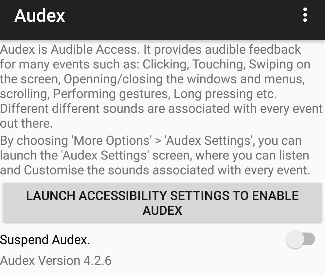 Audex: Accessibility Redefined