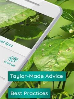 Plantix Preview - grow smart 3