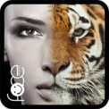 Beauty Face Plus  face morphing