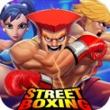 Super Boxing Champion Street Fighting