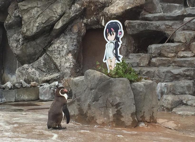 Akhir Hidup Penguin yang Jatuh Cinta Pada Anime