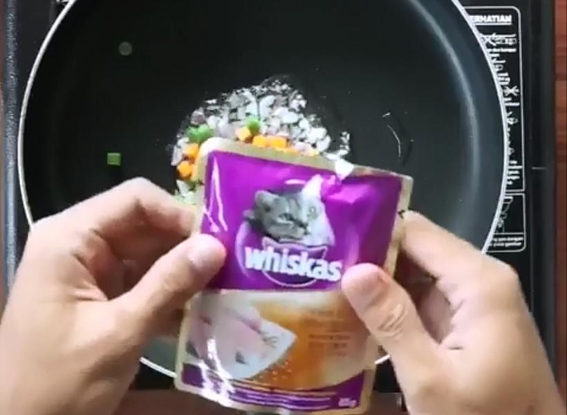 Nasi Goreng Dicampur Makanan Kucing