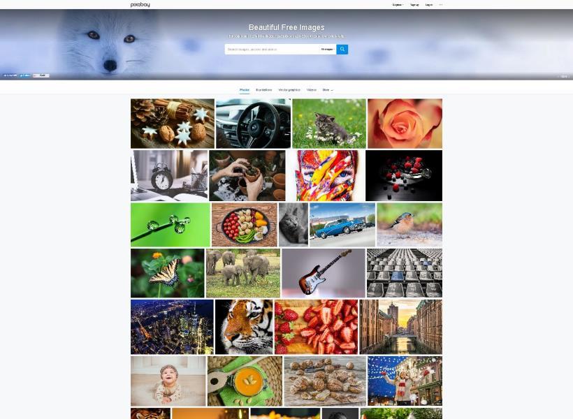 Kumpulan Situs Stok Foto Gratis