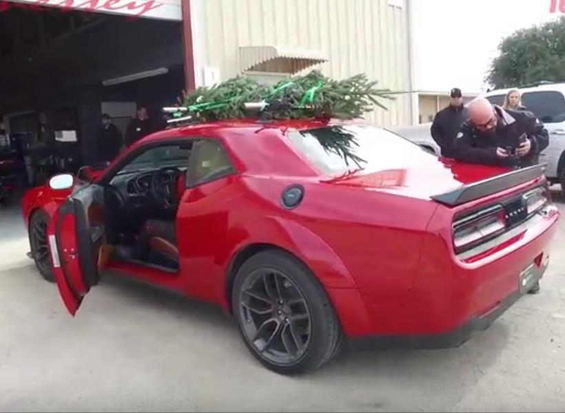 Pohon Natal Tercepat di Dunia, Bisa Gerak Sampai 284 Km per Jam
