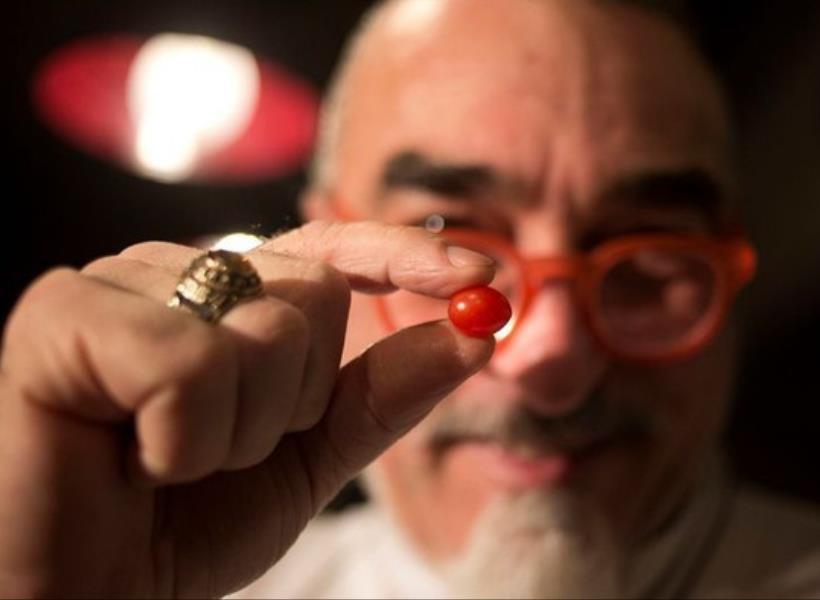 Tomat Ceri Terkecil di Dunia Asal Israel