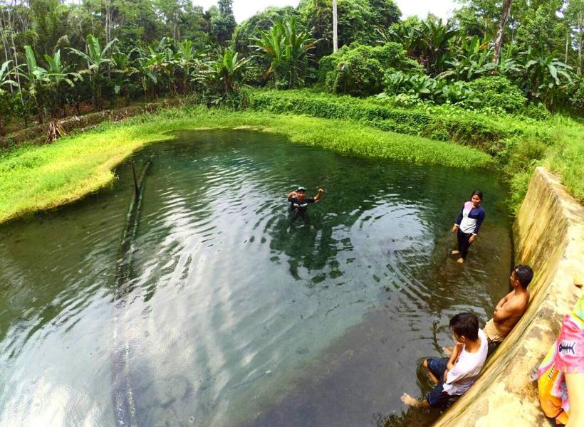 Renang di Mata Air Way Sumpuk Lampung