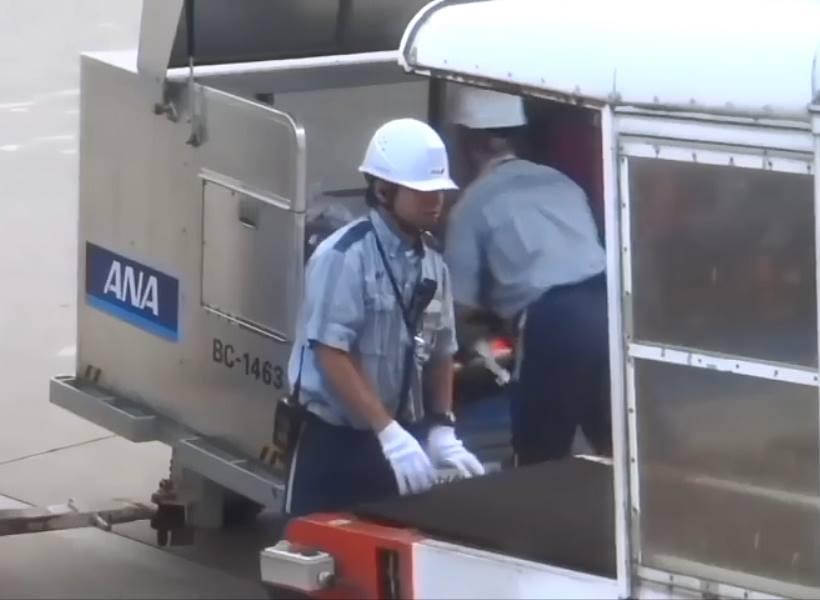 Cara Petugas di Bandara Jepang Menangani Koper Penumpang