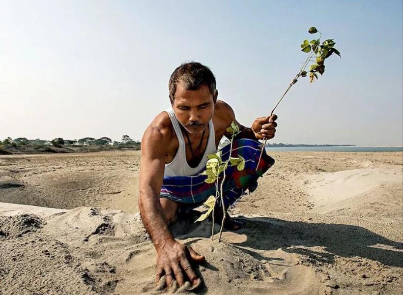 Ubah Tanah Tandus Jadi Hutan dengan Tangannya Sendiri
