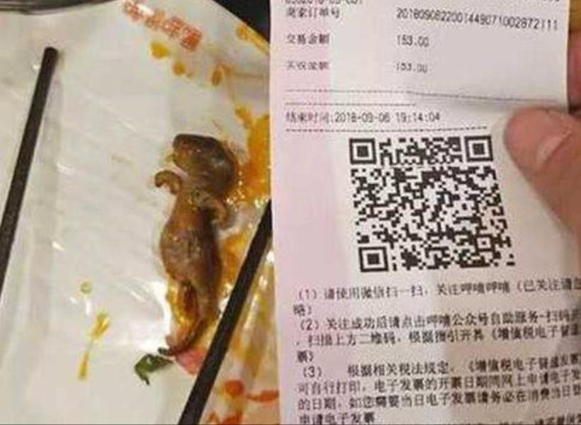Ada Tikus di Makanan, Restoran Terpaksa Ditutup