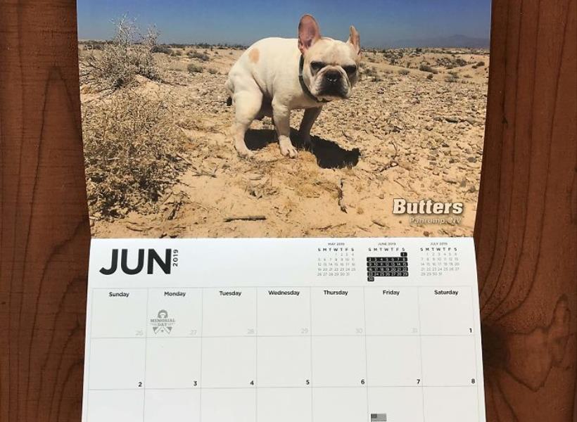 Kalender 2019 Bergambar Anjing Sedang BAB