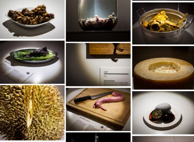 Museum Makanan Menjijikkan Dibuka di Swedia